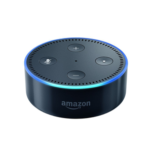 Amazon Echo Dots