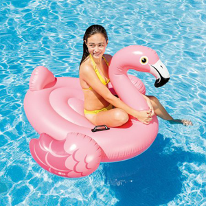 Flamingo Ride On Float
